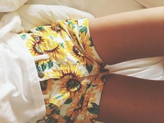 fresh-sunflowershorts