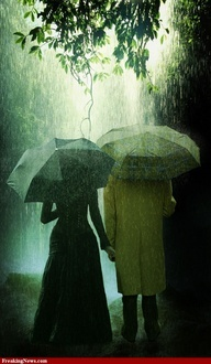 rain-greencouple
