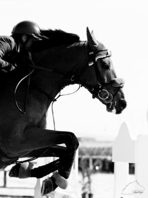 mens-horseracing